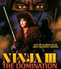 ninja 3