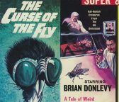 curse-of-the-fly