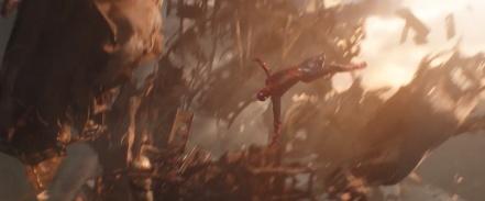 Avengers Infinity War (77)