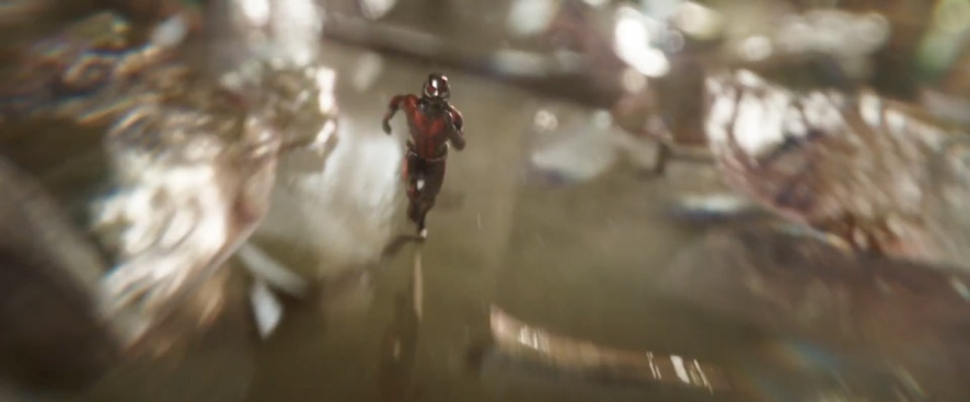 Ant-Man and the Wasp (46)