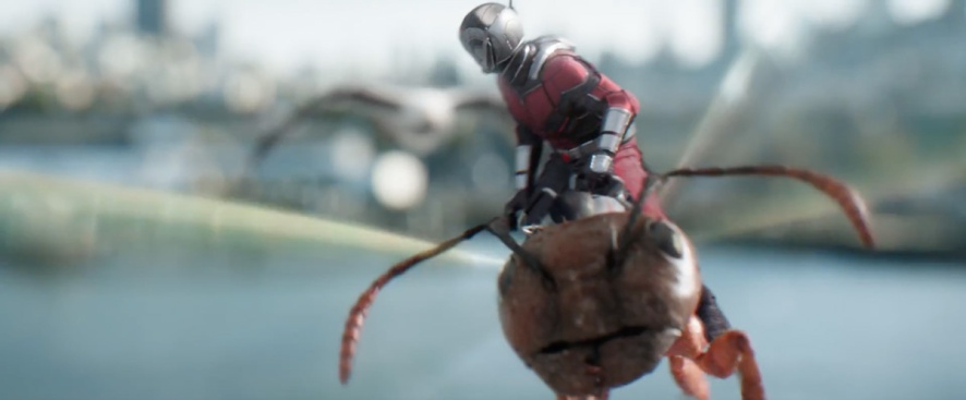 Ant-Man and the Wasp (52)